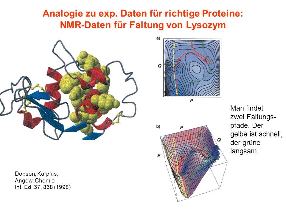 263. Lecture SS 2006 GK 1276 Analogie zu exp. Daten für richtige Proteine: NMR-Daten für Faltung von Lysozym Man findet zwei Faltungs- pfade. Der gelb