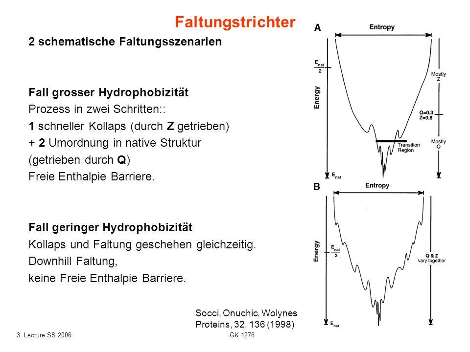 313. Lecture SS 2006 GK 1276 2 schematische Faltungsszenarien Fall grosser Hydrophobizität Prozess in zwei Schritten:: 1 schneller Kollaps (durch Z ge