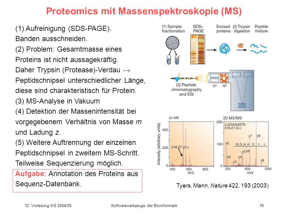12. Vorlesung WS 2004/05Softwarewerkzeuge der Bioinformatik19 Proteomics mit Massenspektroskopie (MS) (1) Aufreinigung (SDS-PAGE). Banden ausschneiden