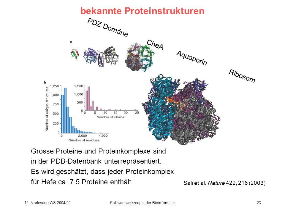 12. Vorlesung WS 2004/05Softwarewerkzeuge der Bioinformatik23 bekannte Proteinstrukturen Sali et al. Nature 422, 216 (2003) PDZ Domäne CheA Aquaporin