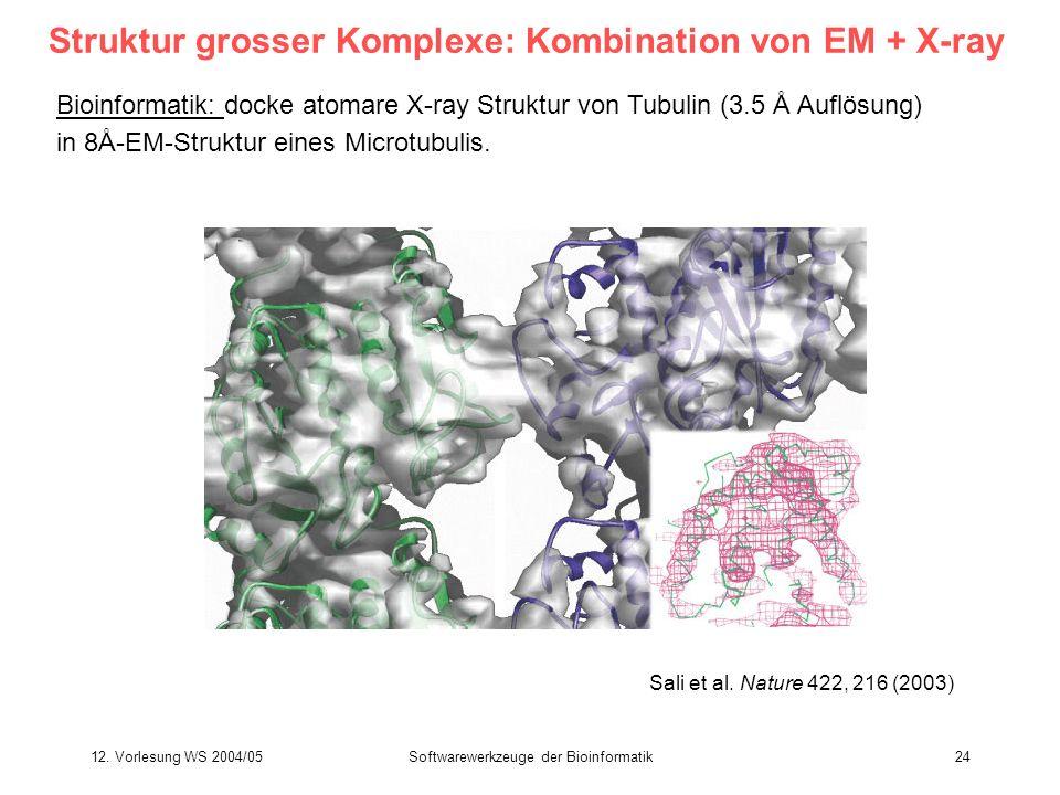 12. Vorlesung WS 2004/05Softwarewerkzeuge der Bioinformatik24 Struktur grosser Komplexe: Kombination von EM + X-ray Bioinformatik: docke atomare X-ray