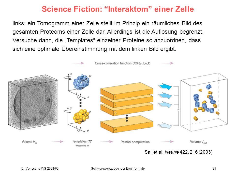 12. Vorlesung WS 2004/05Softwarewerkzeuge der Bioinformatik29 Science Fiction: Interaktom einer Zelle links: ein Tomogramm einer Zelle stellt im Prinz