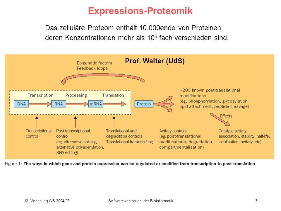 12. Vorlesung WS 2004/05Softwarewerkzeuge der Bioinformatik3 Expressions-Proteomik Das zelluläre Proteom enthält 10.000ende von Proteinen, deren Konze