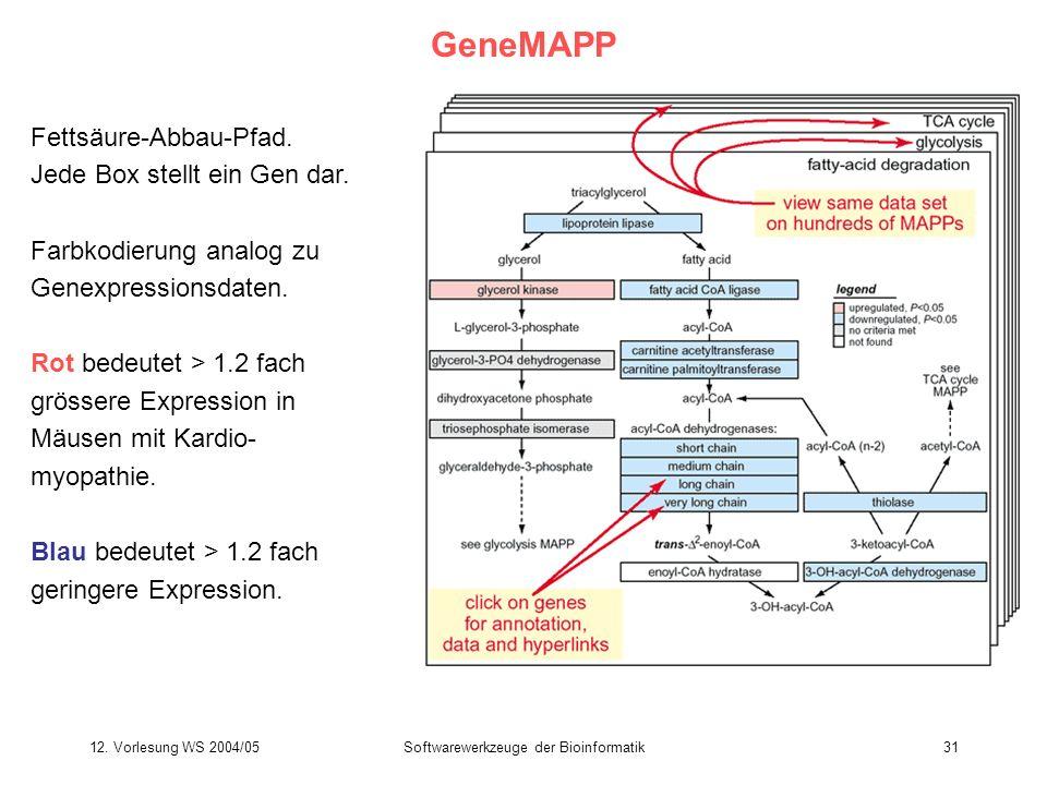 12. Vorlesung WS 2004/05Softwarewerkzeuge der Bioinformatik31 GeneMAPP Fettsäure-Abbau-Pfad. Jede Box stellt ein Gen dar. Farbkodierung analog zu Gene