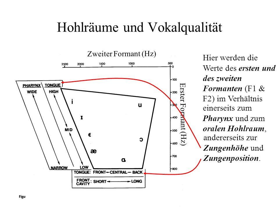 Hohlräume und Vokalqualität Hier werden die Werte des ersten und des zweiten Formanten (F1 & F2) im Verhältnis Zweiter Formant (Hz) Erster Formant (Hz