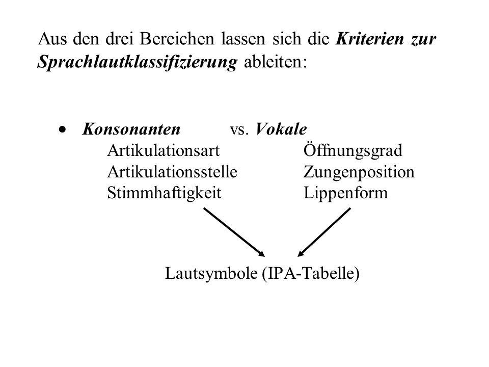 Aus den drei Bereichen lassen sich die Kriterien zur Sprachlautklassifizierung ableiten: Konsonanten vs.