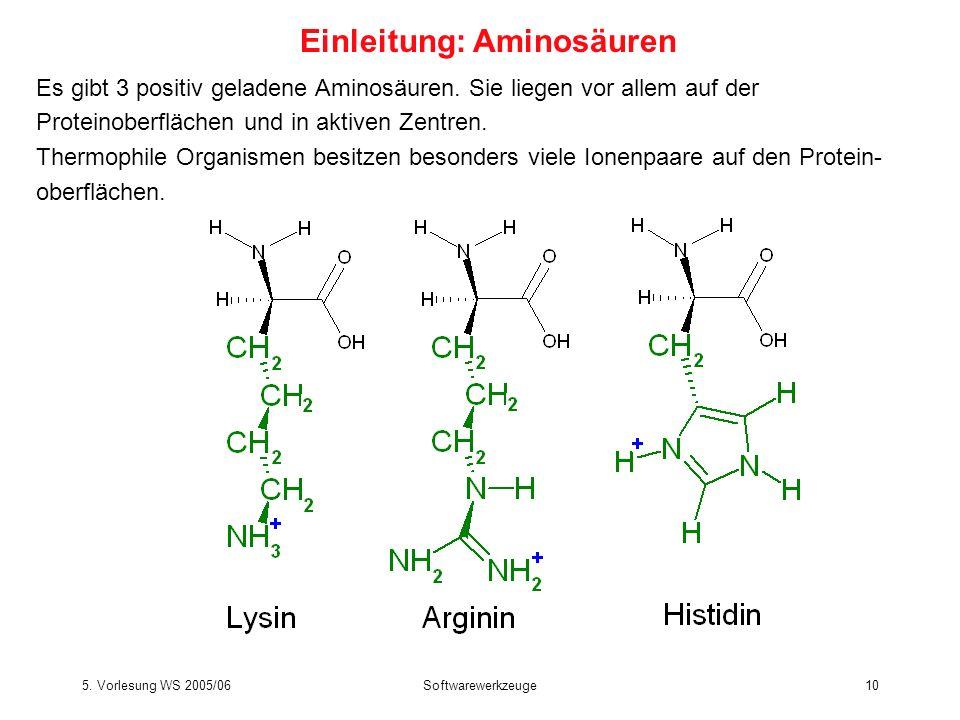 5. Vorlesung WS 2005/06Softwarewerkzeuge10 Es gibt 3 positiv geladene Aminosäuren. Sie liegen vor allem auf der Proteinoberflächen und in aktiven Zent