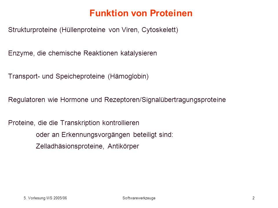 5. Vorlesung WS 2005/06Softwarewerkzeuge2 Funktion von Proteinen Strukturproteine (Hüllenproteine von Viren, Cytoskelett) Enzyme, die chemische Reakti