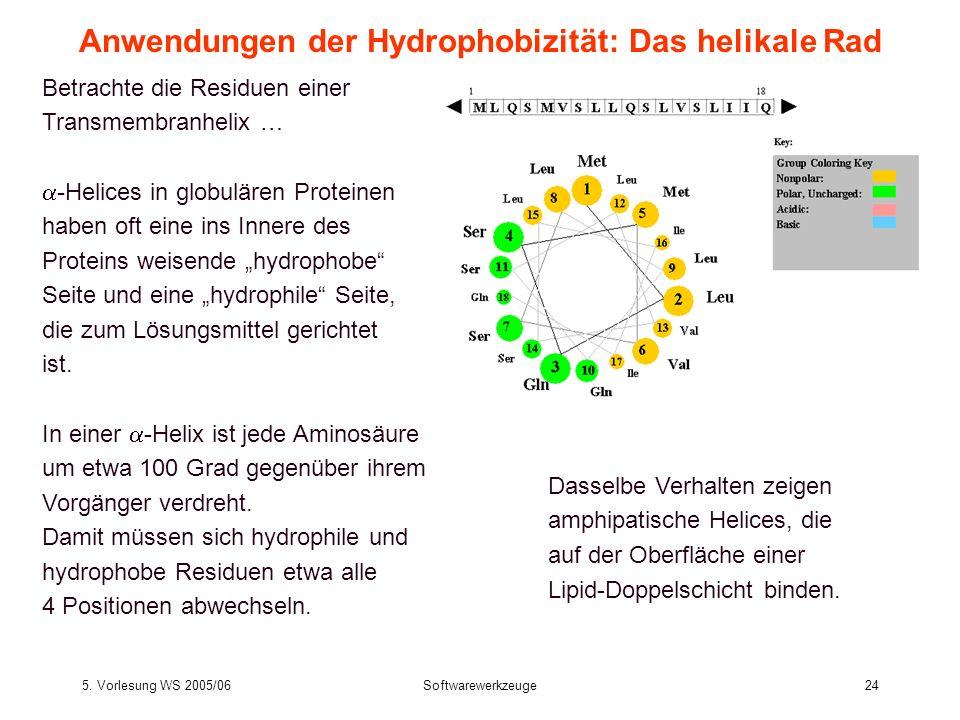 5. Vorlesung WS 2005/06Softwarewerkzeuge24 Betrachte die Residuen einer Transmembranhelix … -Helices in globulären Proteinen haben oft eine ins Innere