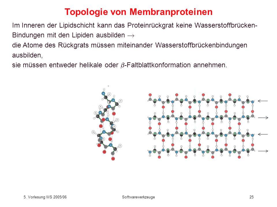 5. Vorlesung WS 2005/06Softwarewerkzeuge25 Im Inneren der Lipidschicht kann das Proteinrückgrat keine Wasserstoffbrücken- Bindungen mit den Lipiden au
