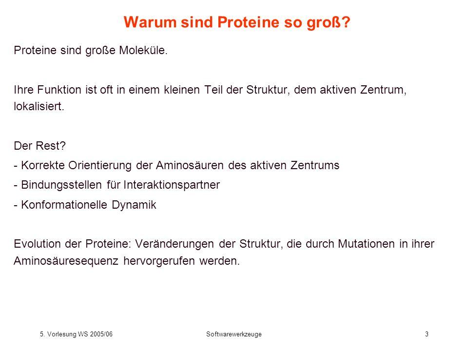 5. Vorlesung WS 2005/06Softwarewerkzeuge3 Warum sind Proteine so groß? Proteine sind große Moleküle. Ihre Funktion ist oft in einem kleinen Teil der S