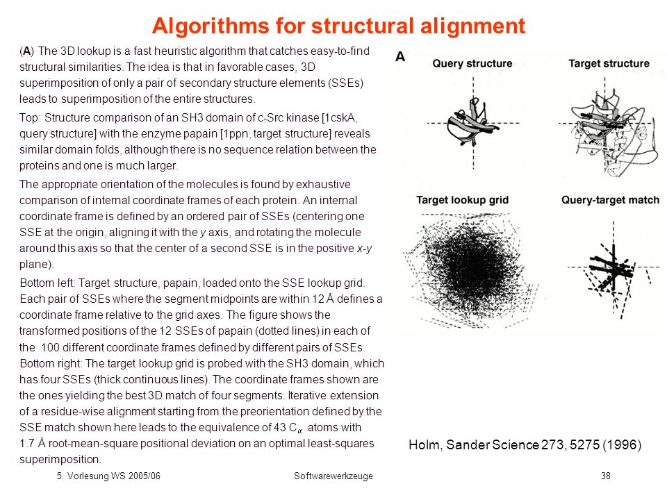 5. Vorlesung WS 2005/06Softwarewerkzeuge38 Algorithms for structural alignment (A) The 3D lookup is a fast heuristic algorithm that catches easy-to-fi