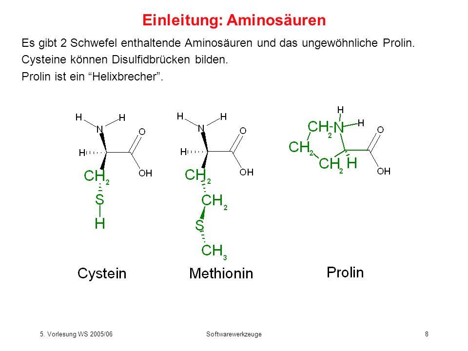 5. Vorlesung WS 2005/06Softwarewerkzeuge8 Es gibt 2 Schwefel enthaltende Aminosäuren und das ungewöhnliche Prolin. Cysteine können Disulfidbrücken bil