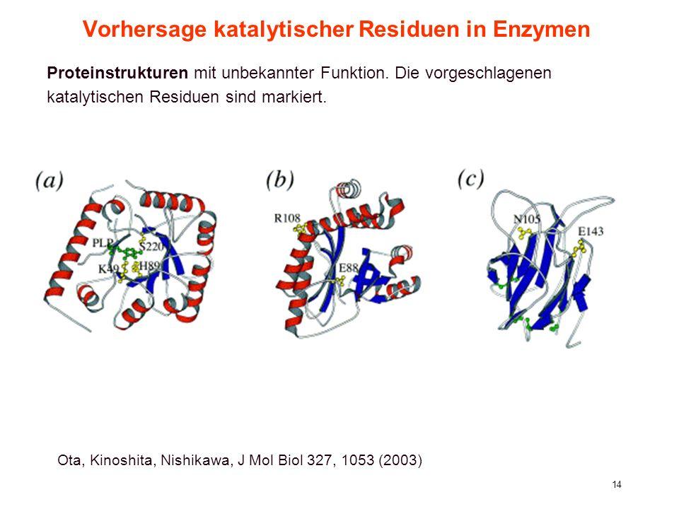 8. Vorlesung WS 2004/05Softwarewerkzeuge14 Vorhersage katalytischer Residuen in Enzymen Ota, Kinoshita, Nishikawa, J Mol Biol 327, 1053 (2003) Protein