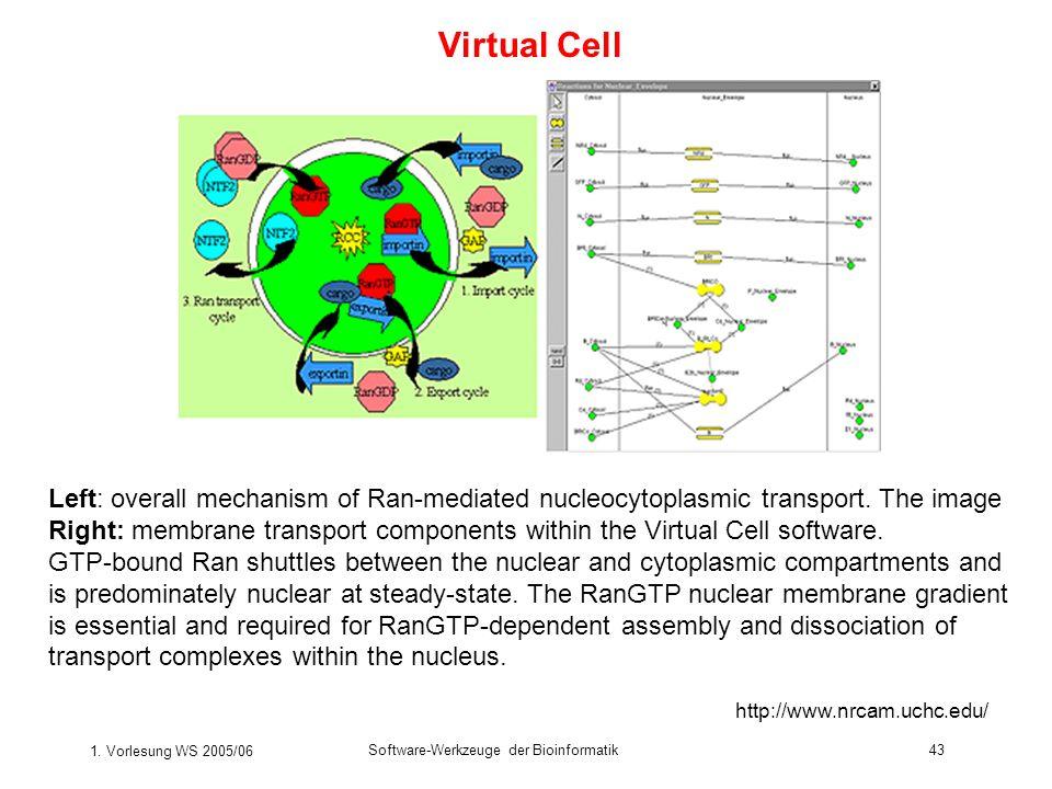 1. Vorlesung WS 2005/06 Software-Werkzeuge der Bioinformatik43 Virtual Cell Left: overall mechanism of Ran-mediated nucleocytoplasmic transport. The i
