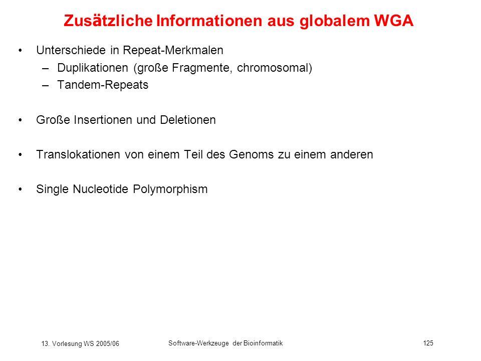 13. Vorlesung WS 2005/06 Software-Werkzeuge der Bioinformatik125 Zus ä tzliche Informationen aus globalem WGA Unterschiede in Repeat-Merkmalen –Duplik