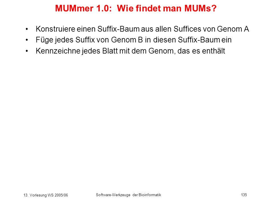 13. Vorlesung WS 2005/06 Software-Werkzeuge der Bioinformatik135 MUMmer 1.0: Wie findet man MUMs? Konstruiere einen Suffix-Baum aus allen Suffices von