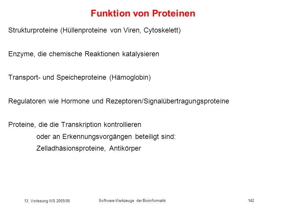 13. Vorlesung WS 2005/06 Software-Werkzeuge der Bioinformatik142 Funktion von Proteinen Strukturproteine (Hüllenproteine von Viren, Cytoskelett) Enzym