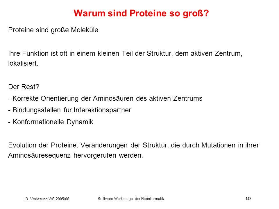 13. Vorlesung WS 2005/06 Software-Werkzeuge der Bioinformatik143 Warum sind Proteine so groß? Proteine sind große Moleküle. Ihre Funktion ist oft in e