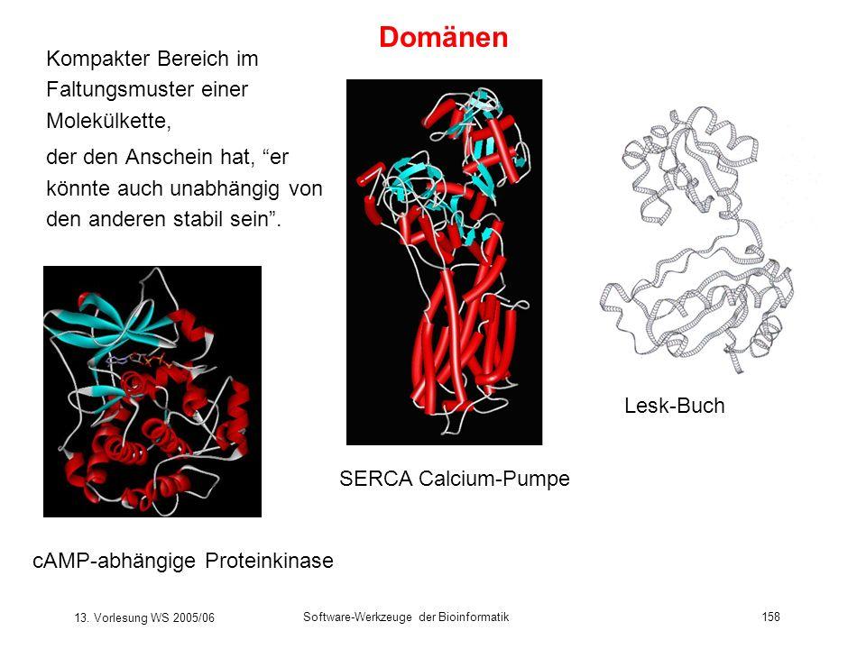 13. Vorlesung WS 2005/06 Software-Werkzeuge der Bioinformatik158 Kompakter Bereich im Faltungsmuster einer Molekülkette, der den Anschein hat, er könn