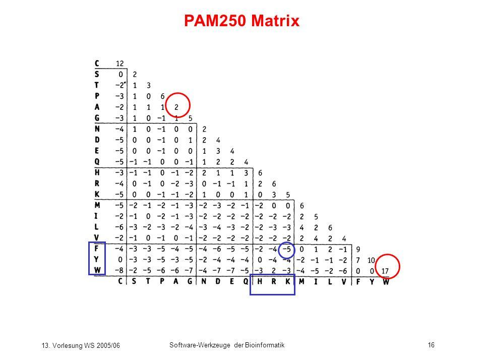 13. Vorlesung WS 2005/06 Software-Werkzeuge der Bioinformatik16 PAM250 Matrix
