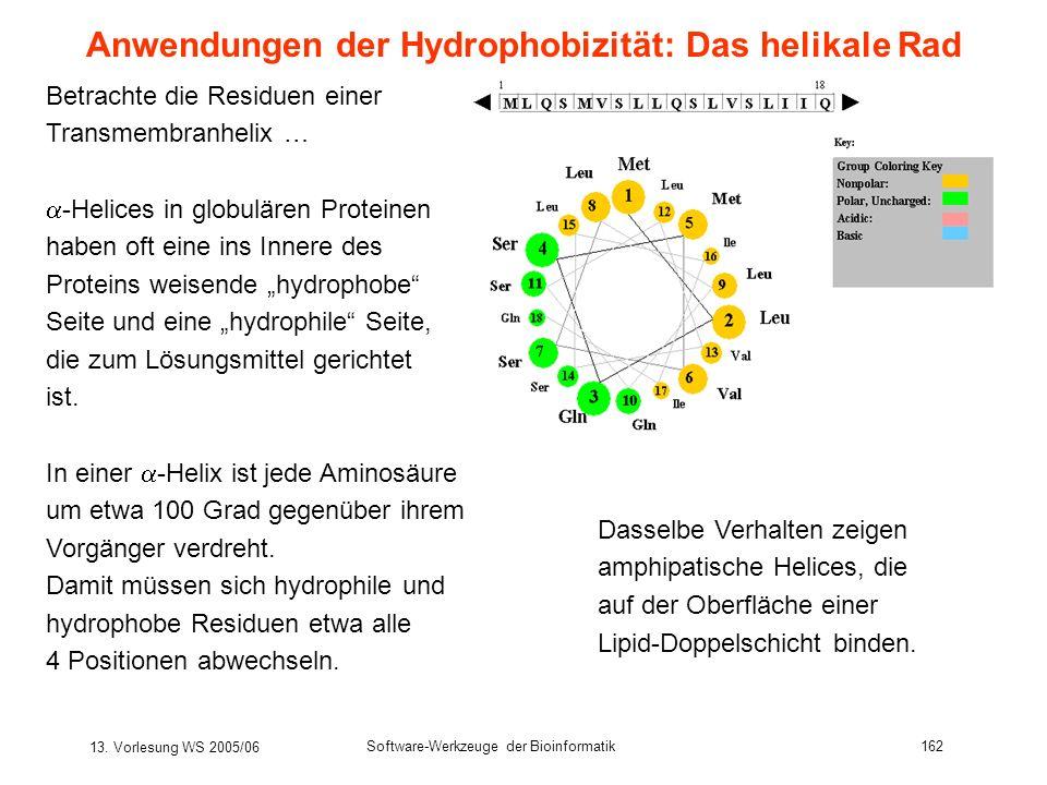 13. Vorlesung WS 2005/06 Software-Werkzeuge der Bioinformatik162 Betrachte die Residuen einer Transmembranhelix … -Helices in globulären Proteinen hab