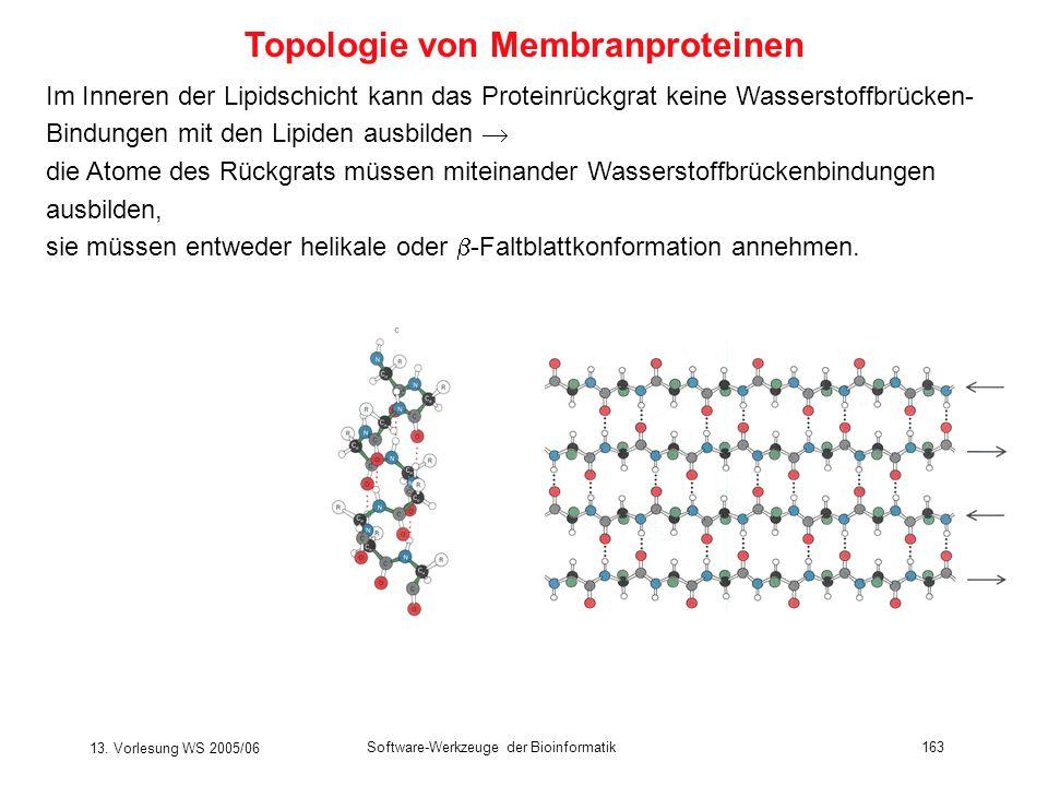 13. Vorlesung WS 2005/06 Software-Werkzeuge der Bioinformatik163 Im Inneren der Lipidschicht kann das Proteinrückgrat keine Wasserstoffbrücken- Bindun