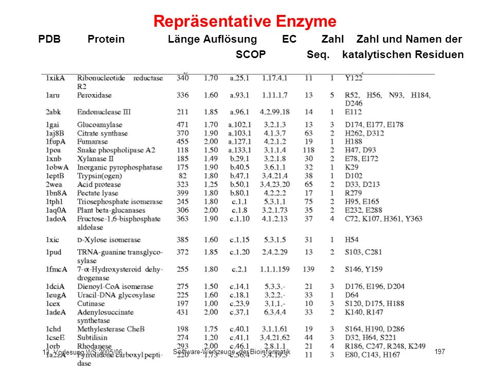 13. Vorlesung WS 2005/06 Software-Werkzeuge der Bioinformatik197 Repräsentative Enzyme PDBProtein Länge Auflösung EC Zahl Zahl und Namen der SCOP Seq.