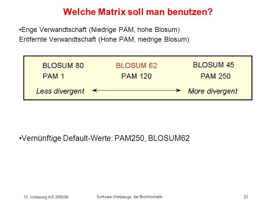 13. Vorlesung WS 2005/06 Software-Werkzeuge der Bioinformatik23 Welche Matrix soll man benutzen? Enge Verwandtschaft (Niedrige PAM, hohe Blosum) Entfe