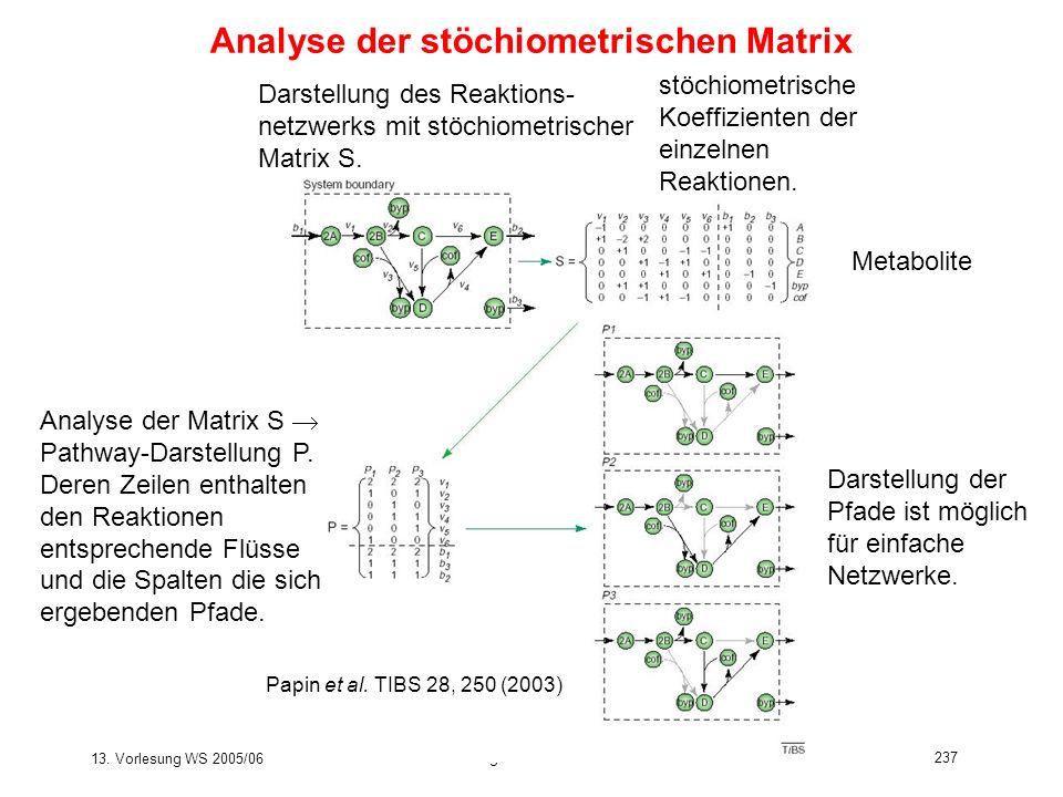 13. Vorlesung WS 2005/06 Software-Werkzeuge der Bioinformatik237 Analyse der stöchiometrischen Matrix Analyse der Matrix S Pathway-Darstellung P. Dere