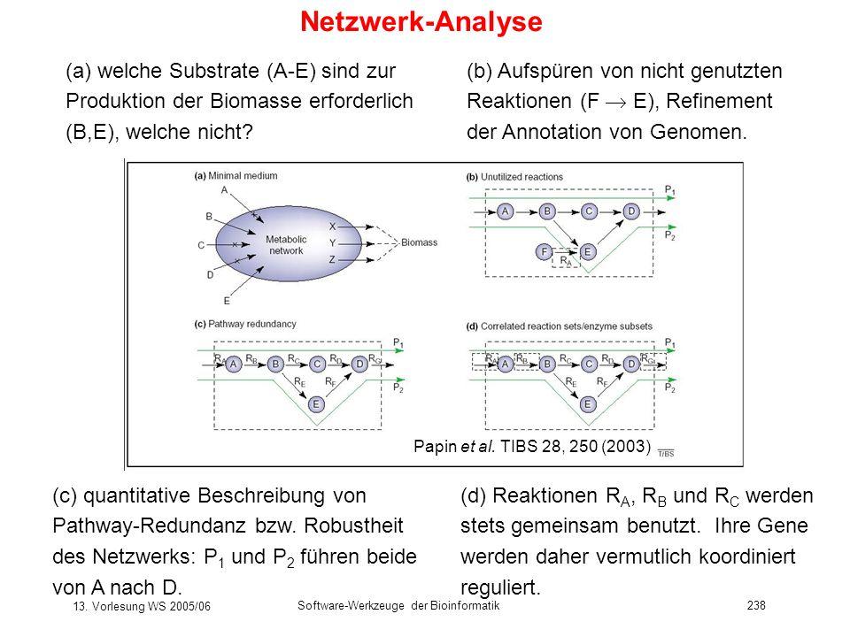 13. Vorlesung WS 2005/06 Software-Werkzeuge der Bioinformatik238 Netzwerk-Analyse (a) welche Substrate (A-E) sind zur Produktion der Biomasse erforder