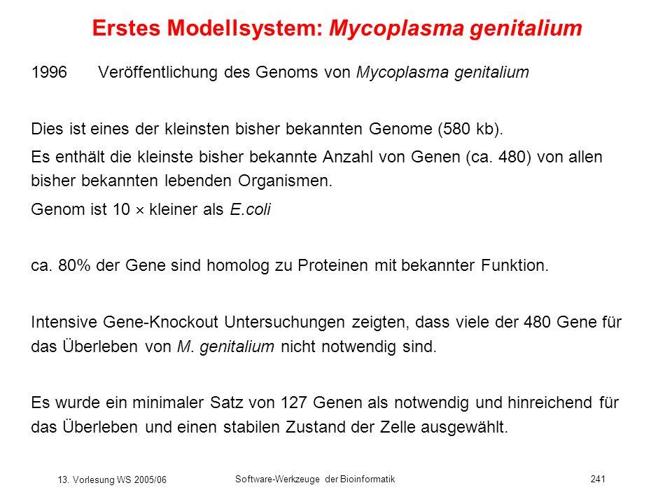 13. Vorlesung WS 2005/06 Software-Werkzeuge der Bioinformatik241 Erstes Modellsystem: Mycoplasma genitalium 1996 Veröffentlichung des Genoms von Mycop