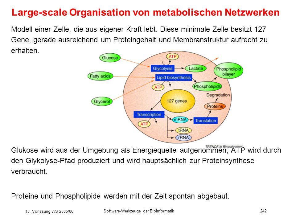 13. Vorlesung WS 2005/06 Software-Werkzeuge der Bioinformatik242 Large-scale Organisation von metabolischen Netzwerken Modell einer Zelle, die aus eig