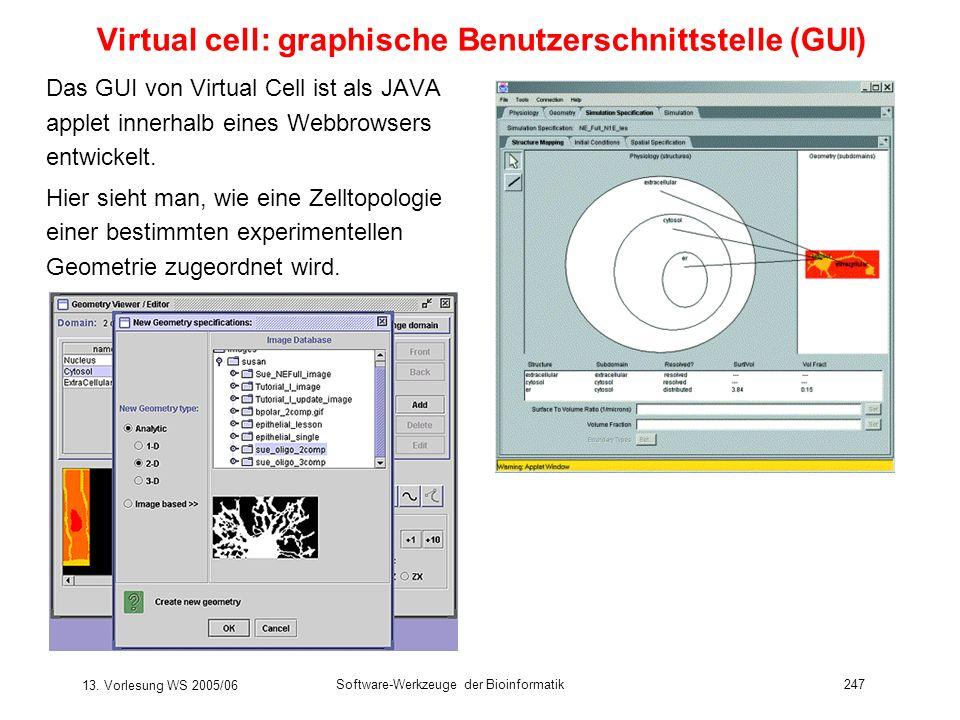 13. Vorlesung WS 2005/06 Software-Werkzeuge der Bioinformatik247 Virtual cell: graphische Benutzerschnittstelle (GUI) Das GUI von Virtual Cell ist als