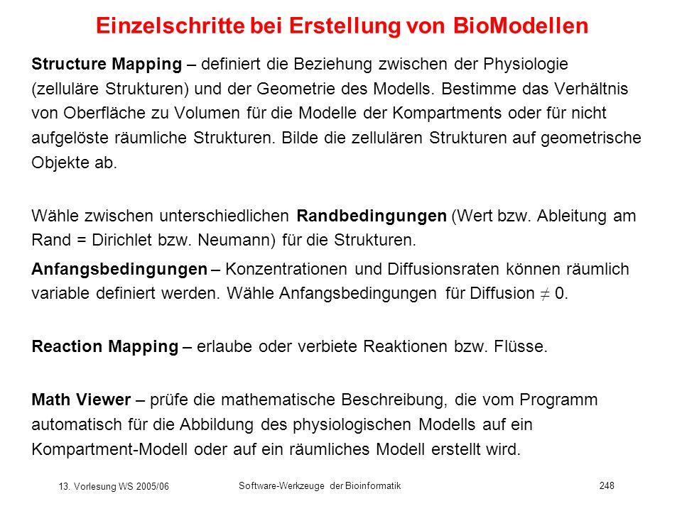 13. Vorlesung WS 2005/06 Software-Werkzeuge der Bioinformatik248 Einzelschritte bei Erstellung von BioModellen Structure Mapping – definiert die Bezie