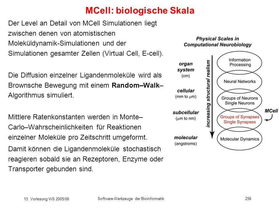 13. Vorlesung WS 2005/06 Software-Werkzeuge der Bioinformatik256 MCell: biologische Skala Der Level an Detail von MCell Simulationen liegt zwischen de