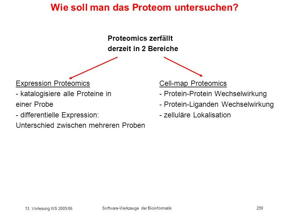13. Vorlesung WS 2005/06 Software-Werkzeuge der Bioinformatik259 Wie soll man das Proteom untersuchen? Proteomics zerfällt derzeit in 2 Bereiche Expre