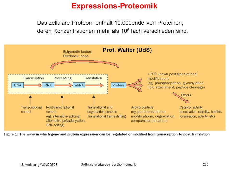 13. Vorlesung WS 2005/06 Software-Werkzeuge der Bioinformatik260 Expressions-Proteomik Das zelluläre Proteom enthält 10.000ende von Proteinen, deren K