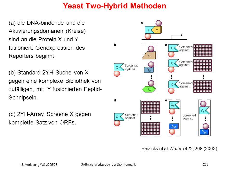 13. Vorlesung WS 2005/06 Software-Werkzeuge der Bioinformatik263 Phizicky et al. Nature 422, 208 (2003) Yeast Two-Hybrid Methoden (a) die DNA-bindende