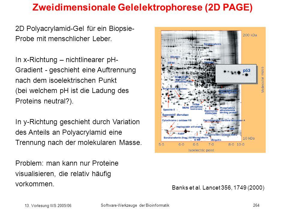 13. Vorlesung WS 2005/06 Software-Werkzeuge der Bioinformatik264 Zweidimensionale Gelelektrophorese (2D PAGE) 2D Polyacrylamid-Gel für ein Biopsie- Pr