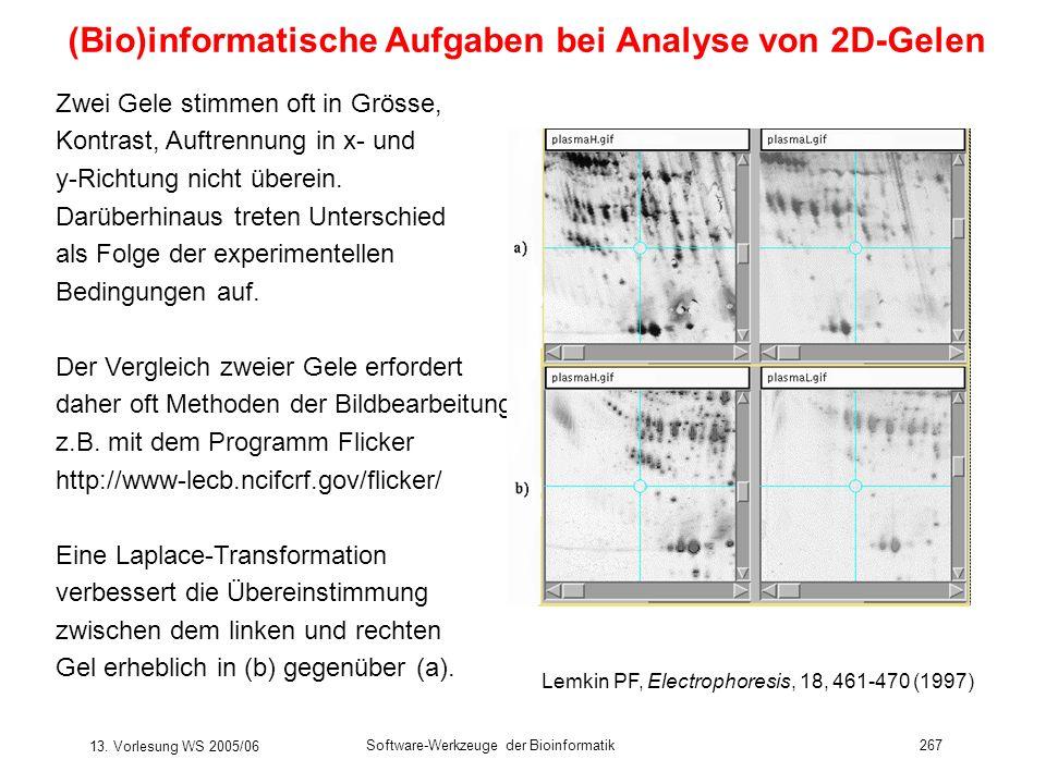 13. Vorlesung WS 2005/06 Software-Werkzeuge der Bioinformatik267 (Bio)informatische Aufgaben bei Analyse von 2D-Gelen Zwei Gele stimmen oft in Grösse,