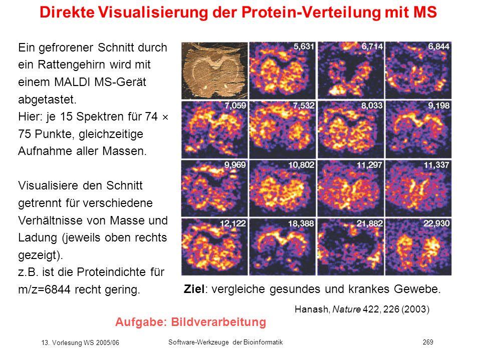 13. Vorlesung WS 2005/06 Software-Werkzeuge der Bioinformatik269 Direkte Visualisierung der Protein-Verteilung mit MS Ein gefrorener Schnitt durch ein