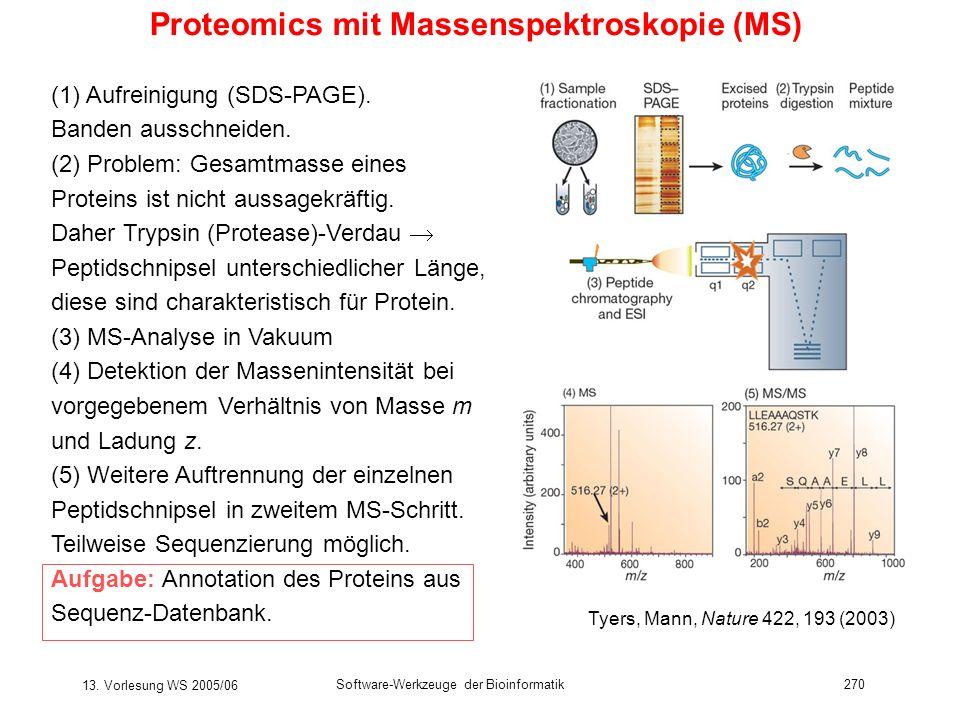 13. Vorlesung WS 2005/06 Software-Werkzeuge der Bioinformatik270 Proteomics mit Massenspektroskopie (MS) (1) Aufreinigung (SDS-PAGE). Banden ausschnei