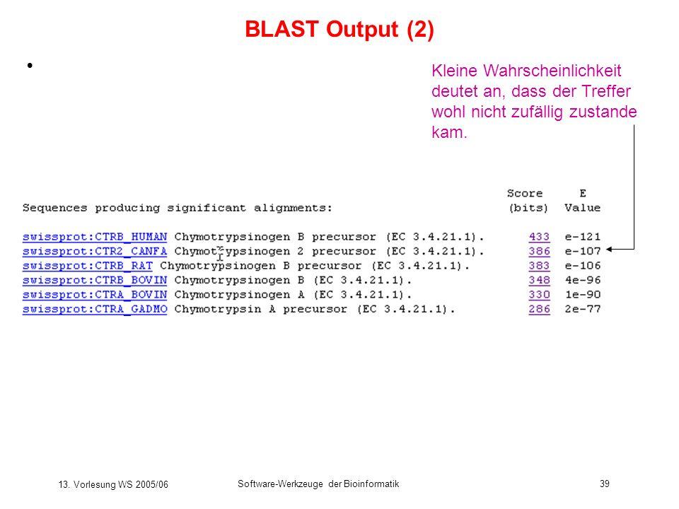 13. Vorlesung WS 2005/06 Software-Werkzeuge der Bioinformatik39 Kleine Wahrscheinlichkeit deutet an, dass der Treffer wohl nicht zufällig zustande kam