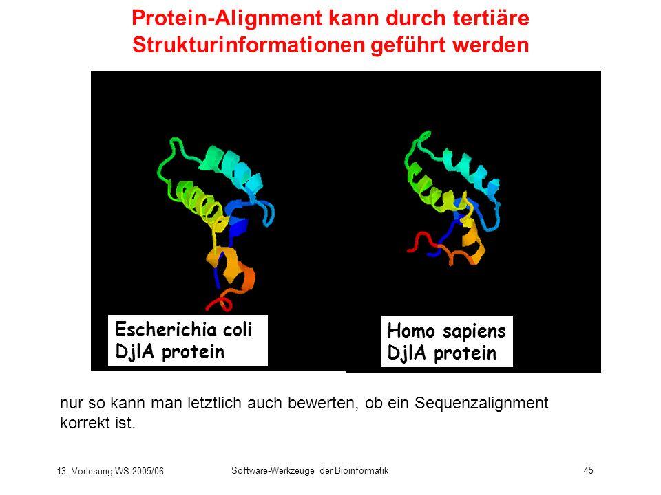 13. Vorlesung WS 2005/06 Software-Werkzeuge der Bioinformatik45 Homo sapiens DjlA protein Escherichia coli DjlA protein Protein-Alignment kann durch t