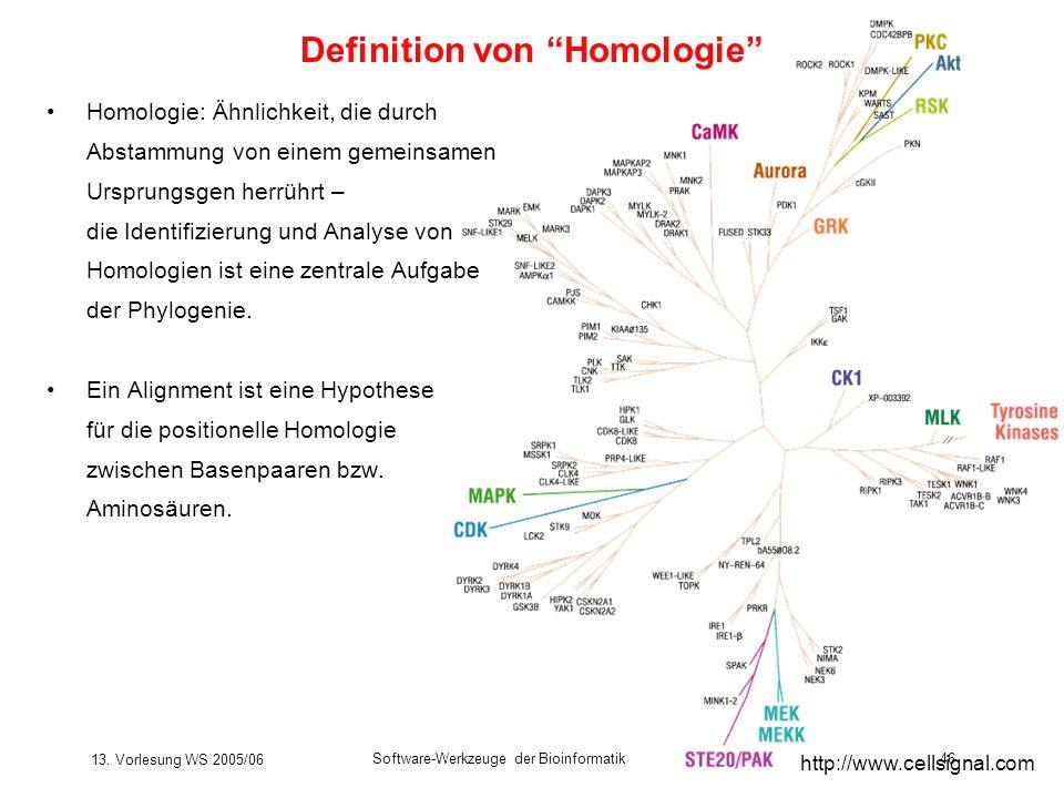 13. Vorlesung WS 2005/06 Software-Werkzeuge der Bioinformatik46 Homologie: Ähnlichkeit, die durch Abstammung von einem gemeinsamen Ursprungsgen herrüh