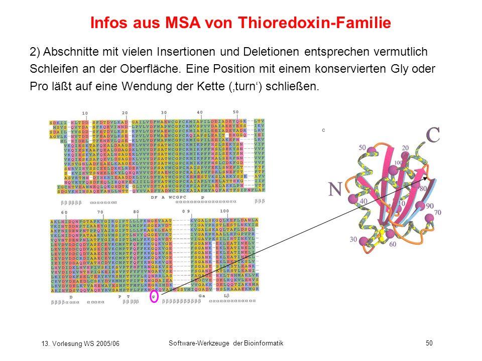 13. Vorlesung WS 2005/06 Software-Werkzeuge der Bioinformatik50 Infos aus MSA von Thioredoxin-Familie 2) Abschnitte mit vielen Insertionen und Deletio