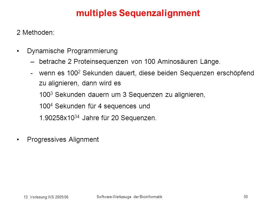 13. Vorlesung WS 2005/06 Software-Werkzeuge der Bioinformatik55 2 Methoden: Dynamische Programmierung –betrache 2 Proteinsequenzen von 100 Aminosäuren