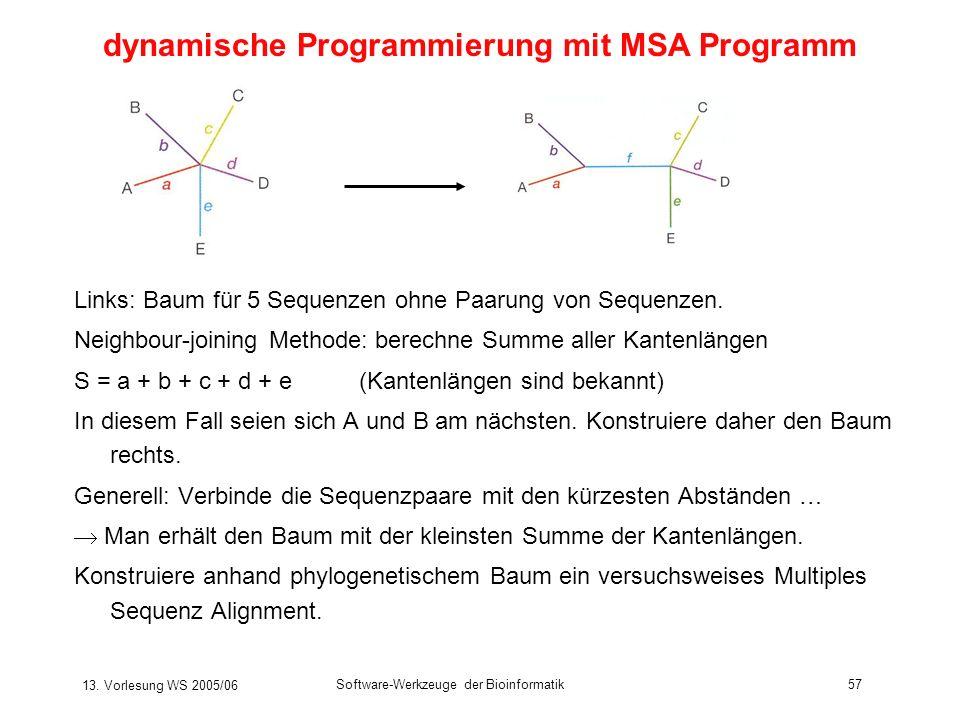13. Vorlesung WS 2005/06 Software-Werkzeuge der Bioinformatik57 dynamische Programmierung mit MSA Programm Links: Baum für 5 Sequenzen ohne Paarung vo