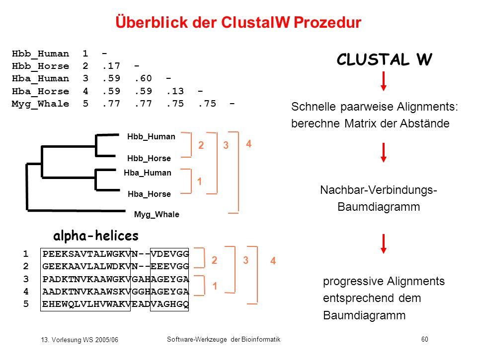 13. Vorlesung WS 2005/06 Software-Werkzeuge der Bioinformatik60 Schnelle paarweise Alignments: berechne Matrix der Abstände 1 PEEKSAVTALWGKVN--VDEVGG